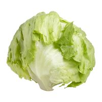 Iceberg Lettuce, Kale Or Broccoli