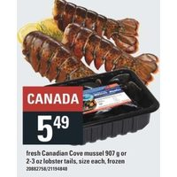 Fresh Canadian Cove Mussel Or Lobster Tails
