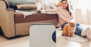 [] The Best Air Purifiers to Buy for Your Home or Office