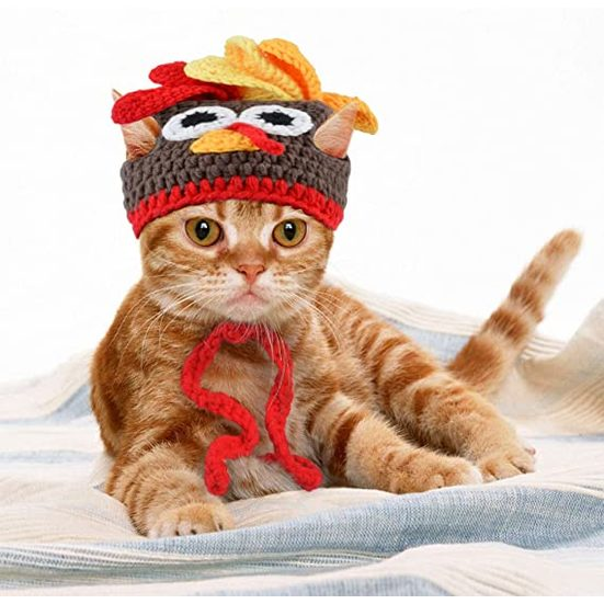 11. Best Thanksgiving Pet Item: Legendog Cat or Dog Costume Turkey Hat