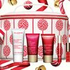 Clarins: Get a Free 6-Piece Customizable Holiday Delight Gift Set With Any Purchase Over $100!